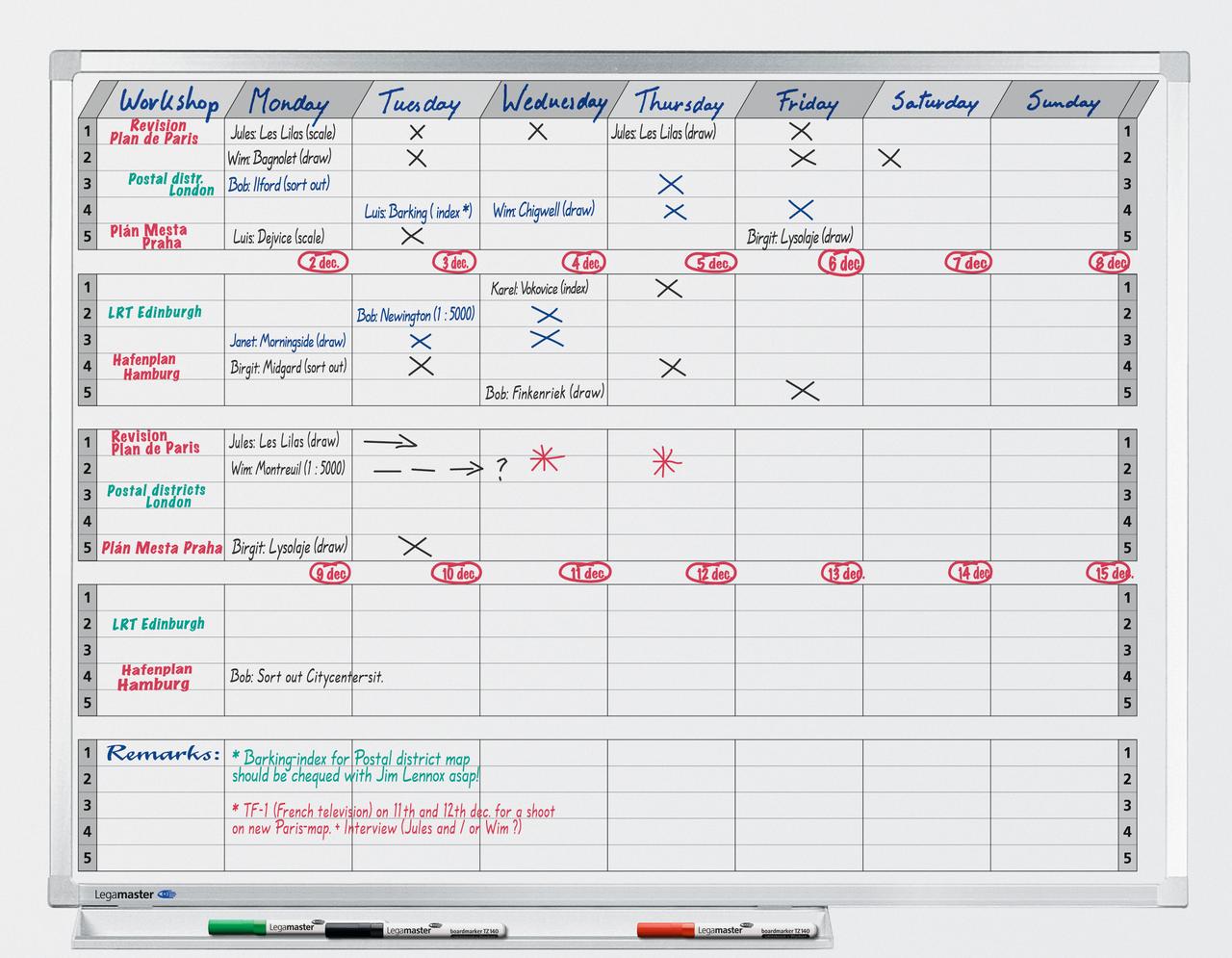 PROFESSIONAL plán aktivit/projektů, 7 dnů/5 týdnů, 90x120