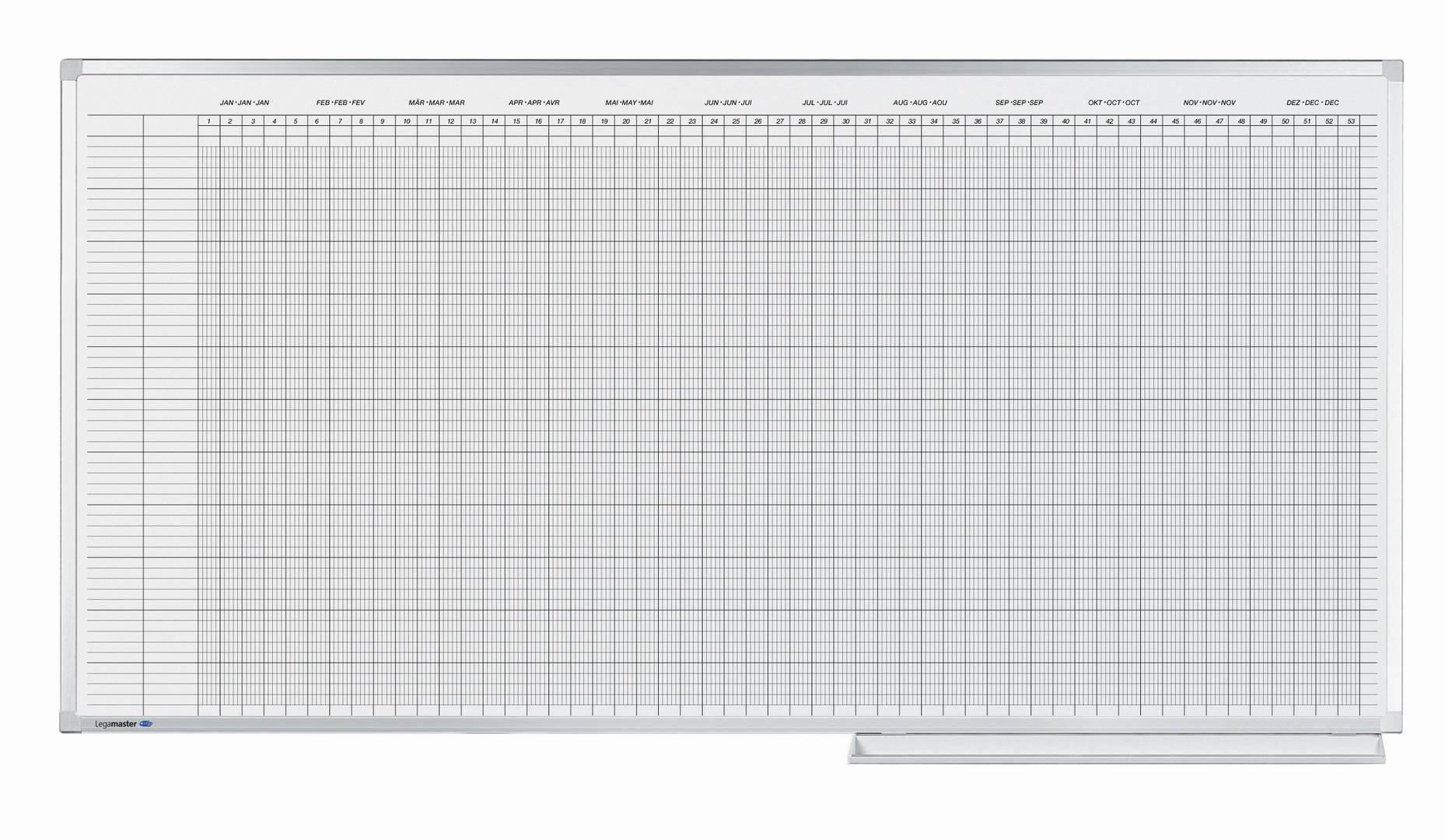 PROFESSIONAL roční plánovací tabule (30 polí) 50x150 cm